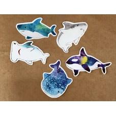 《鯊鯊魚貼紙》